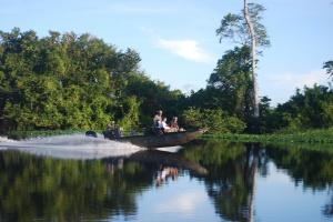 Amazonie-Pérou-The Cattleya