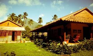 Nicaragua - Finca San Juan de la Isla sur l'île d'Ometepe
